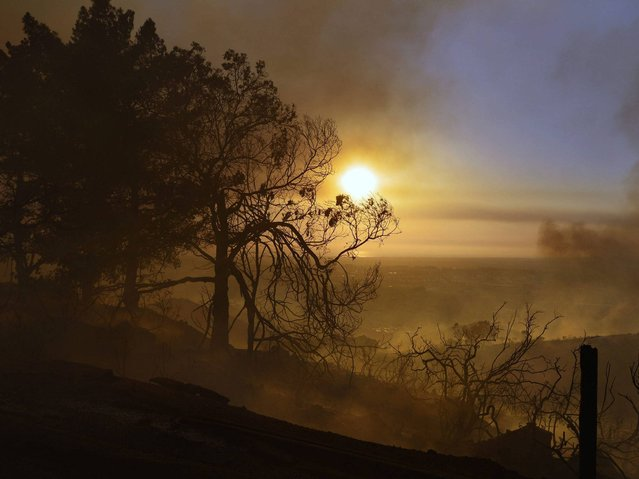 Smoldering trees obscuring the sunset atop a hill in San Marcos, San Diego county, California. (Photo by Stuart Palley/EPA)