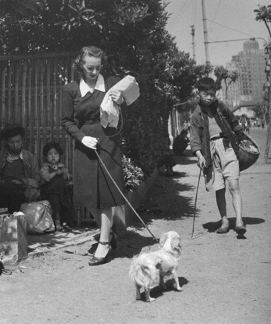 1949年5月,一欧洲女人在原法租界遛狗。 (In May 1949, a European woman walking the dog in the former French Concession)