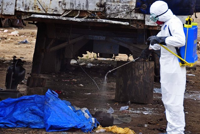 The body of a man found in the street, suspected of dying from the ebola virus is sprayed with disinfectant, in the capital city of Monrovia, Liberia, Tuesday, August 12, 2014. The World Health Organization declared it's ethical to use untested drugs and vaccines in the ongoing Ebola outbreak in West Africa although the tiny supply of one experimental drug handed out to three people has been depleted and it could be many months until more is available. (Photo by Abbas Dulleh/AP Photo)