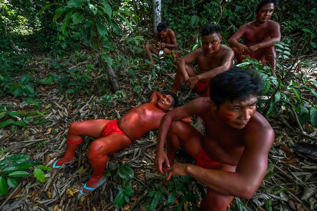 Waiapi men into the jungle in the Waiapi indigenous reserve in Amapa state in Brazil on October 14, 2017. (Photo by Apu Gomes/AFP Photo)