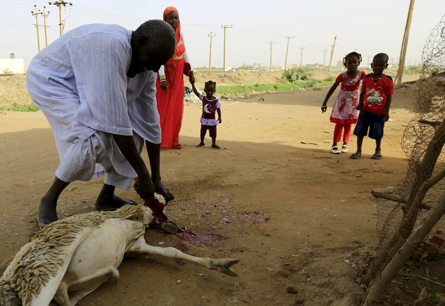 Children watch as a man slaughters a sheep after performing Eid al-Adha prayers in Khartoum, Sudan September 24, 2015. (Photo by Mohamed Nureldin Abdallah/Reuters)