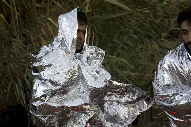 Afghan refugees are wrapped with thermal blankets following their arrival on an overcrowded dinghy on the Greek island of Lesbos, after crossing in rough seas from the Turkish coast, October 2, 2015. (Photo by Dimitris Michalakis/Reuters)