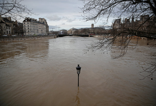 A street-lamp is seen on the flooded banks of the Seine River in Paris, France, after days of almost non-stop rain caused flooding in the country, January 24, 2018. (Photo by Christian Hartmann/Reuters)