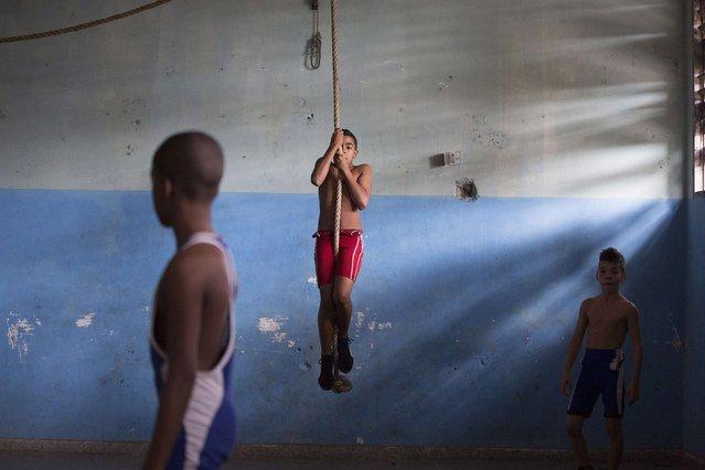 Children exercises before a wrestling lesson on the outskirts of Havana, November 1, 2014. (Photo by Alexandre Meneghini/Reuters)