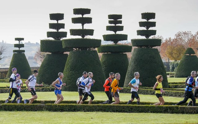 Competitors run during the Marathon International du Beaujolais race near sculptured trees at the castle of Pizay, November 22, 2014. (Photo by Robert Pratta/Reuters)