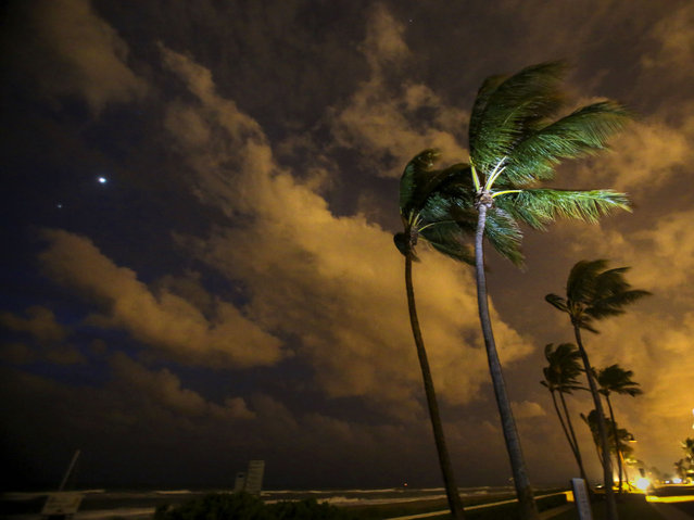 Wind whips the palms on Midtown Beach in Palm Beach, Florida as Venus and Mars glow over the ocean before dawn on October 19, 2015. Wind gusts of more than 30 mph are expected today and through early tomorrow as a cool front moves down and vies for control with a low pressure system in the Gulf of Mexico. (Photo by Lannis Waters/The Palm Beach Post via ZUMA Wire)