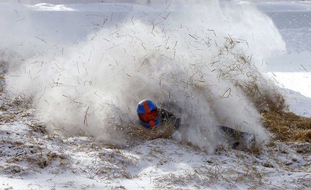 A rider falls into straw on Shuttlcock Corner during the Cresta Run at the private St. Moritz Tobogganing Club (SMTC), February 6, 2015. The SMTC, which was founded in 1887, builds the 3/4 mile (1,212m) ice-run afresh every year. (Photo by Arnd Wiegmann/Reuters)