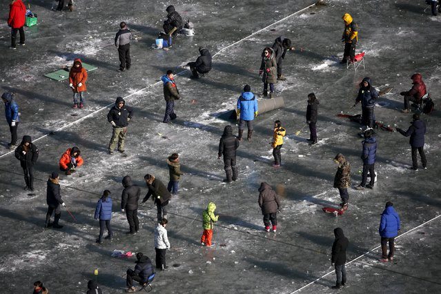 People fish for trout through holes in a frozen river in Hwacheon, south of the demilitarized zone (DMZ) separating the two Koreas, January 9, 2016. (Photo by Kim Hong-Ji/Reuters)