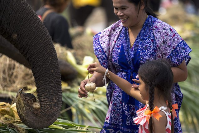 A child feeds an elephant fruit during Thailand's National Elephant Day in the ancient Thai capital Ayutthaya March 13, 2015. (Photo by Athit Perawongmetha/Reuters)