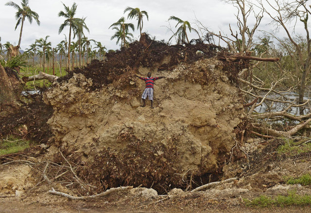 A child climbs on a block of earth under a uprooted tree near Port Vila on March 19, 2015 after Severe Tropical Cyclone Pam hit the Pacific nation of Vanuatu. Vanuatu has hit out at aid groups swarming the cyclone-ravaged Pacific nation over a lack of coordination, which it said cost precious time getting help to those in need, while warning food will run out in a week. (Photo by Fred Payet/AFP Photo)