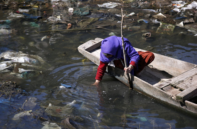 A Kashmiri woman looks for scrap wood in a polluted canal near Srinagar in the Kashmir region of India, March 22, 2016. (Photo by Danish Ismail/Reuters)
