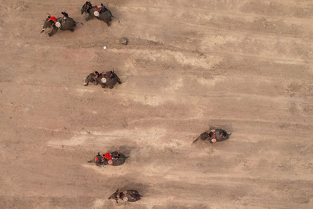 This aerial photograph shows mahouts racing their elephants during the Buon Don elephant festival in Vietnam's central highlands of Dak Lak province on March 12, 2019. Locals say the race is a celebration of the much revered animals – traditionally thought of as family members in this part of Vietnam – but conservation groups are calling for an end to the festival, which they say is cruel and outdated. (Photo by Manan Vatsyayana/AFP Photo)