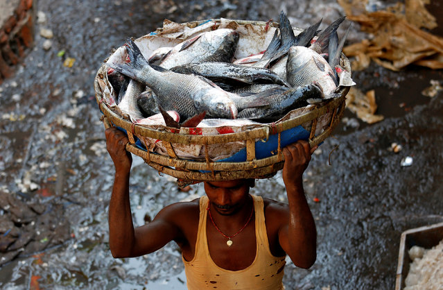 A worker carries a basket of fish, at a wholesale fish market, on the outskirts of Kolkata, March 15, 2017. (Photo by Rupak De Chowdhuri/Reuters)
