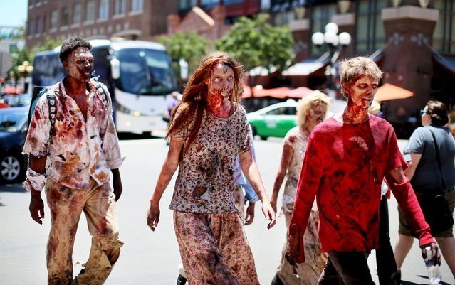 Attnedees dressed in Zombie outfits walk down the Gaslamp Quarter outside of the 2015 Comic-Con International in San Diego, California July 8, 2015. (Photo by Sandy Huffaker/Reuters)