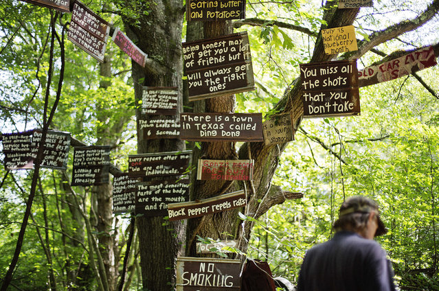 """Messages greet visitors on the """"Tree of Knowledge"""" as maintenance man Rockey Bryson walks by at Old Car City, the world's largest known classic car junkyard Thursday, July 16, 2015, in White, Ga. Six miles of trails wind through the 32 acre forest which is home to over 4,000 classic cars. (Photo by David Goldman/AP Photo)"""
