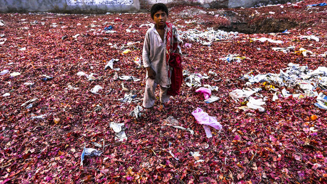 A boy searches for onions between grocery waste at a market in Peshawar, Pakistan, 19 November 2014. (Photo by Bilawal Arbab/EPA)