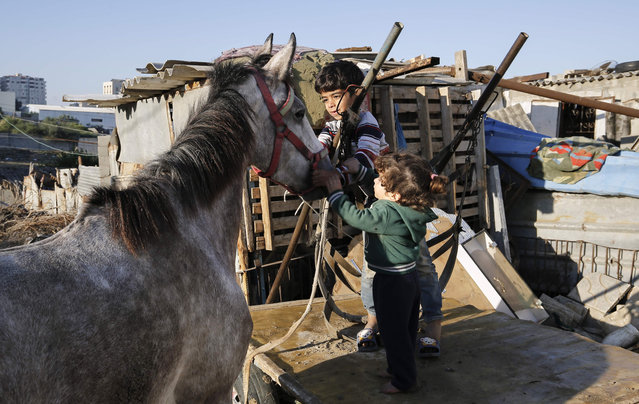 """Palestinian children pet a horse in Gaza City on December 19, 2019. Israeli warplanes attacked an arms plant in the Hamas-controlled Gaza Strip early Thursday, after Palestinian militants in the enclave fired a rocket at Israel,the army said. """"Overnight, a rocket was launched from the Gaza Strip at Israeli territory"""", an English-language army statement said. """"In response . fighter jets struck a Hamas weapons manufacturing site in the northern Gaza Strip"""". (Photo by Mohammed Abed/AFP Photo)"""