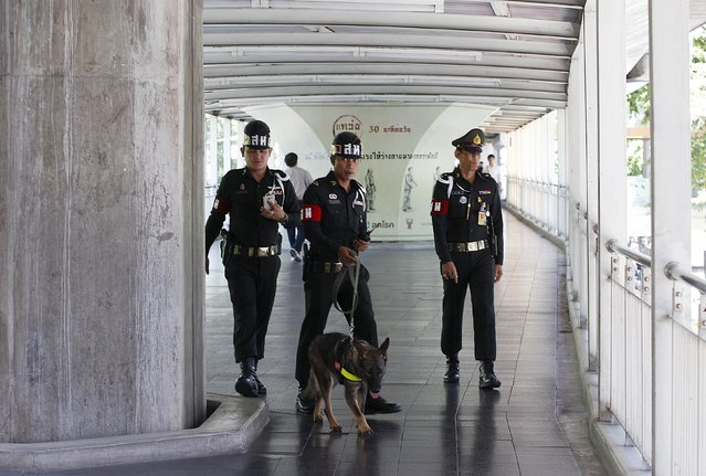 Thai military personnel work with a detection dog on the Bangkok Skywalk August 19, 2015, as authorities step up security in the city after Monday's deadly blast at the Erawan shrine. (Photo by Kerek Wongsa/Reuters)