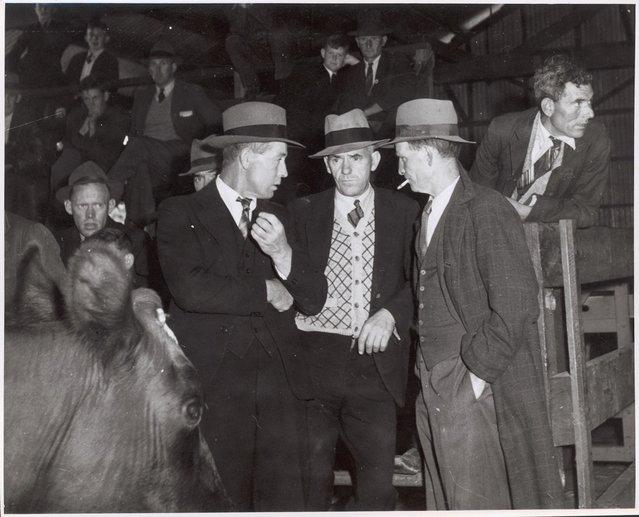 Three men at the Warragul cattle sales, Victoria, ca. 1944