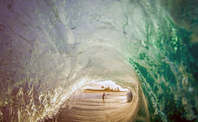 Man in the barrel. (Photo by Kenji Croman/Caters News)