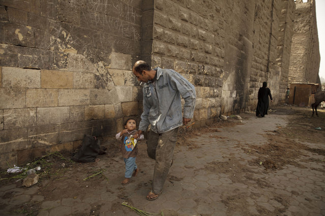 In this Saturday, March 8, 2014 photo, Mohamed Mahmoud walks with his daughter to his makeshift animal barber shop in the shadow of the medieval aqueduct in Cairo, Egypt. Despite injuries and low pay, Mahmoud takes pride in his trade, saying he is sought after as an animal barber across Cairo and neighboring cities. (Photo by Maya Alleruzzo/AP Photo)