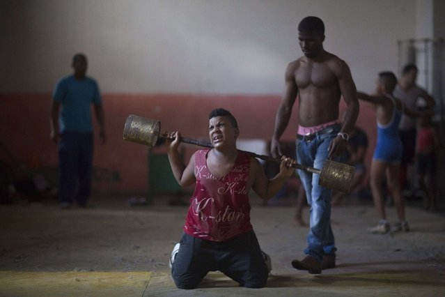 A child lifts weights during a wrestling lesson in downtown Havana, November 13, 2014. (Photo by Alexandre Meneghini/Reuters)