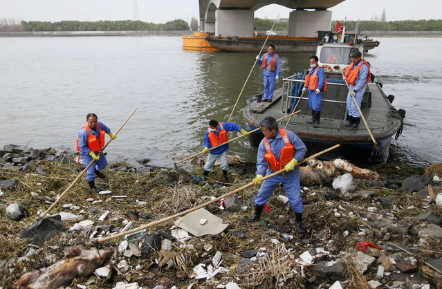 Cleaning workers retrieve the carcasses of pigs from a branch of Huangpu River in Shanghai, March 10, 2013. Over 2,200 pigs have been found dead in one of Shanghai's main water sources, official media reported on March 11, 2013, triggering a public outcry in China where concerns over food safety and environmental pollution run high. Picture taken March 10, 2013. (Photo by Reuters/Stringer)