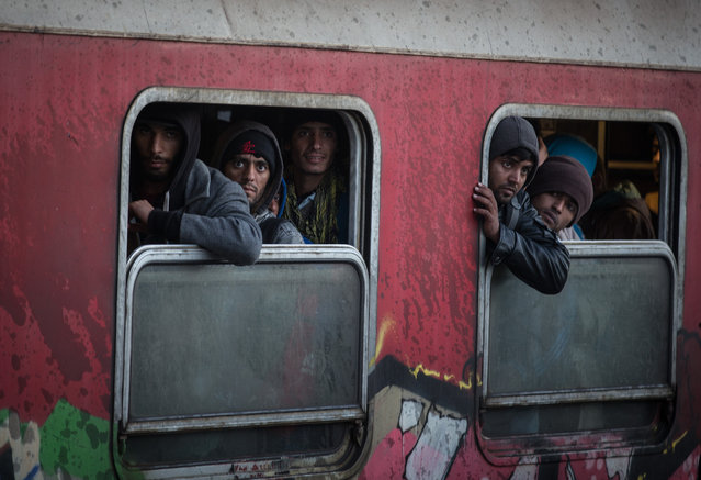 Migrants arrive at Tabonovce railway station close to the Serbian border on October 25, 2015 in Tabanovce, Macedonia. Despite the worsening weather, thousands of migrants are crossing through the Former Republic Of Macedonia as they continue their journey on towards western Europe. (Photo by Matt Cardy/Getty Images)