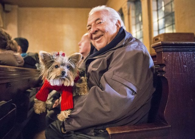 """A owner poses with his dog during the """"Blessing of the Animals"""" at the Christ Church United Methodist in Manhattan, New York December 7, 2014. (Photo by Elizabeth Shafiroff/Reuters)"""