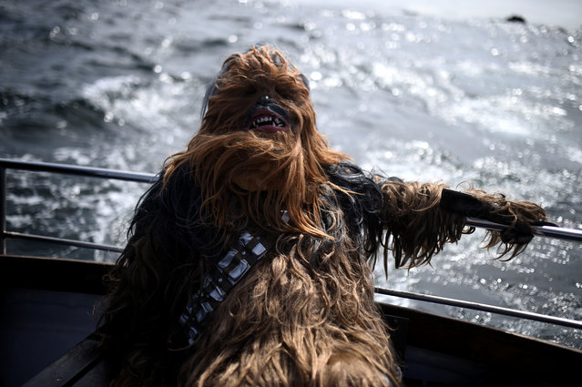 A Star Wars fan dressed in costume as Chewbacca displays the signs of seasickness on a boat trip to Skellig Island in the County Kerry village of Portmagee, Ireland on May 4, 2018. (Photo by Clodagh Kilcoyne/Reuters)