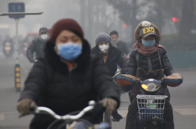 People wearing protective masks ride bicycles in the morning on an extremely polluted day in Beijing, China December 8, 2015. (Photo by Kim Kyung-Hoon/Reuters)