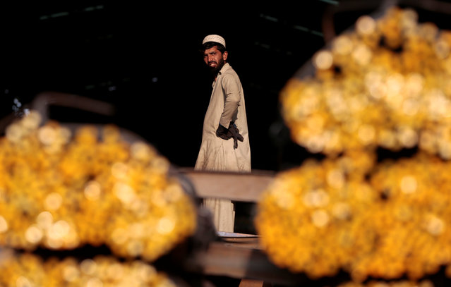 A worker takes a break from loading steel rods at a steel mill in Islamabad, Pakistan November 11,  2016. (Photo by Caren Firouz/Reuters)