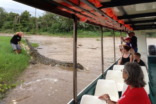 Tour goers watch from the safety of the boat as a guide feeds a crocodile from the bank of the Tarcoles river in Tarcoles, Costa Rica. (Photo and caption by Barcroft Media)