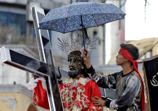 A devotee shelters a replica of Black Nazarene from the drizzle during a parade, two days before the annual procession to celebrate its feast day in Quiapo, Manila, Philippines, January 7, 2019. (Photo by Eloisa Lopez/Reuters)