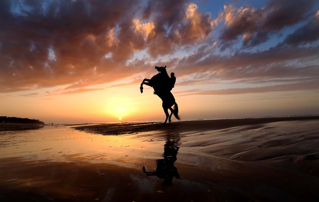 A man rides a horse on the beach as the sun sets in Gaza City, December 28, 2013. (Photo by Hatem Moussa/Associated Press)