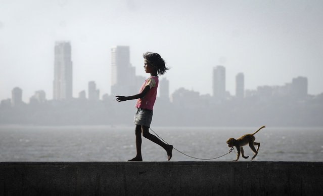 A girl walks with her pet monkey on a promenade along the Arabian Sea in Mumbai, India March 5, 2012. (Photo by Reuters/Stringer)