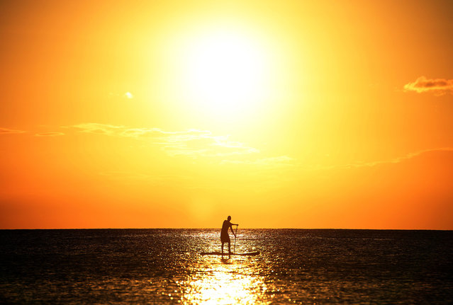 A man surf paddles near a beach as sun sets in Bridgetown on March 12, 2014. (Photo by Jewel Samad/AFP Photo)