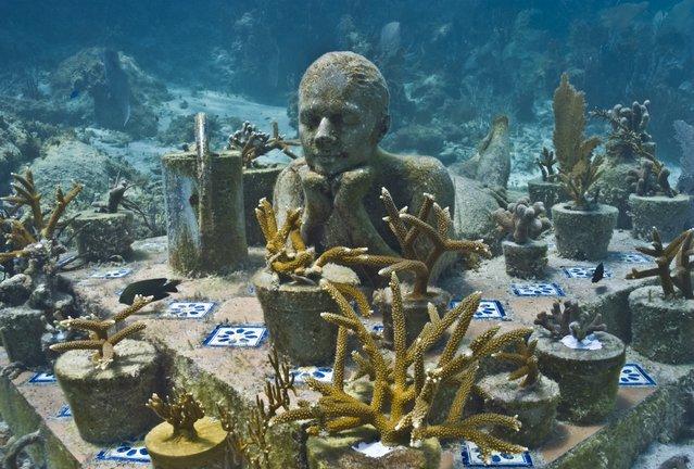 """The gardener"". Underwater Sculpture, Museo Subacuático de Arte, Cancun. (Photo by Jason deCaires Taylor/UnderwaterSculpture)"