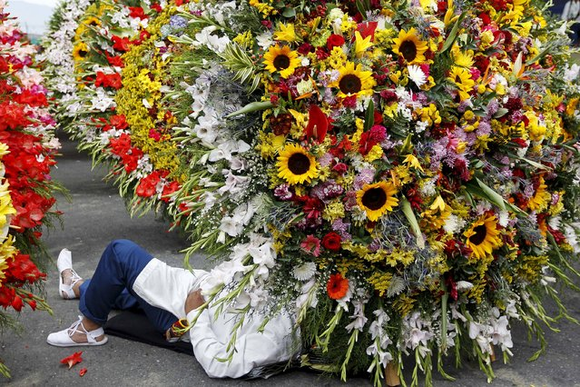 A flower grower, known as a silletero, rests on the ground during the annual flower parade in Medellin, Colombia, August 9, 2015. (Photo by Fredy Builes/Reuters)