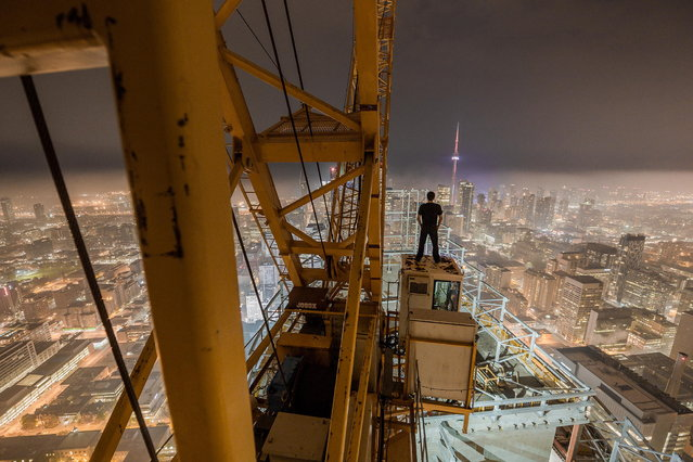 """""""Highlife"""". (Photo by Roof Topper)"""