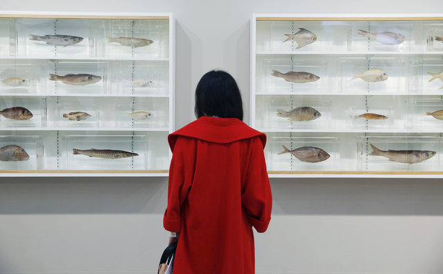 """A visitor poses with artist Damien Hirst's artwork """"Because I Can't Have You I Want You"""" at the Frieze Art Fair in London, October 14, 2014. (Photo by Luke MacGregor/Reuters)"""