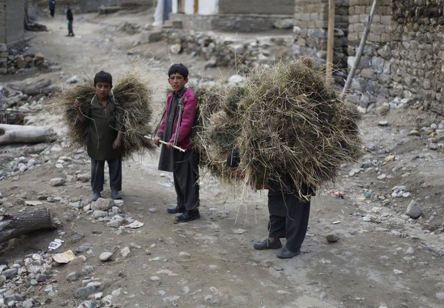 Three boys carry hay in the village of Askole in the Karakoram mountain range in Pakistan September 11, 2014.  In more peaceful times, northern Pakistan's unspoilt beauty was a major tourist draw but the potentially lucrative industry has been blighted by years of violence. (Photo by Wolfgang Rattay/Reuters)
