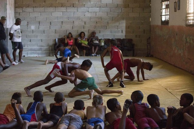 Children practice during a wrestling lesson in downtown Havana, October 30, 2014. (Photo by Alexandre Meneghini/Reuters)