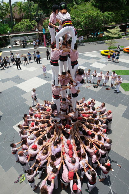Minyons de Terrassa from Spain erect Singapore's first UNESCO world heritage human towers (or castells) at Kidzania on October 20, 2016 in Sentosa, Singapore. 227 people from Catalonia travelled to Singapore to perform the tower to start a week-long celebration of Catalan culture. (Photo by Suhaimi Abdullah/Getty Images)