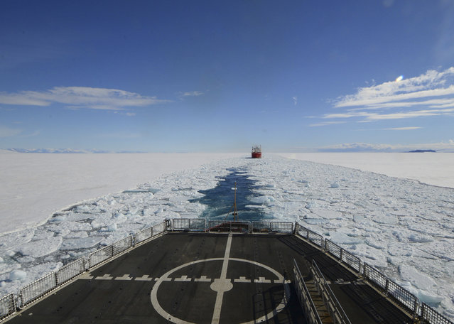 In this January 26, 2015 photo, made available by the U.S. Coast Guard, the crew of the Coast Guard Cutter Polar Star opens a channel through the ice to the National Science Foundation's McMurdo Station, Antarctica, for the supply ship Ocean Giant. (Photo by Petty Officer 1st Class George Degener/AP Photo/U.S. Coast Guard)