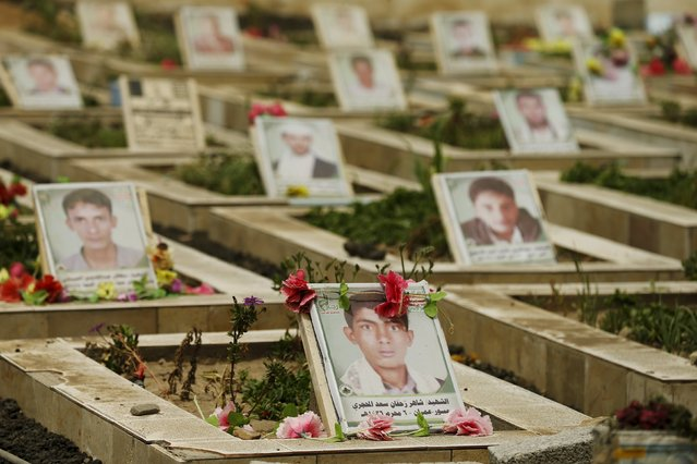 Pictures of Houthi followers are seen on their graves at a cemetery dedicated for Houthis killed in Yemen's ongoing coflict, in Sanaa April 5, 2015. (Photo by Khaled Abdullah/Reuters)