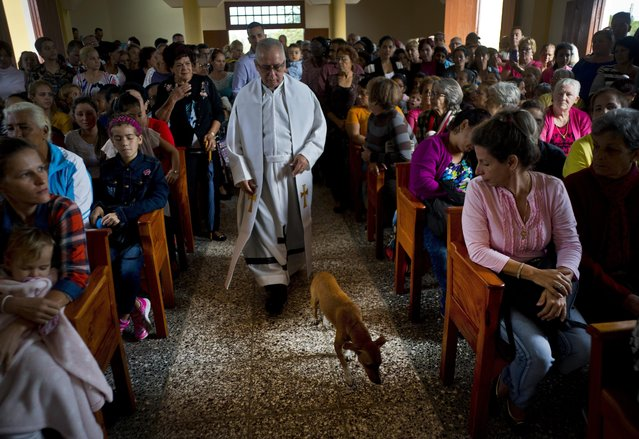 Father Cirilo Castro takes part in the consecration Mass of the Sagrado Corazon de Jesus, or Sacred Heart, Catholic church, in Sandino, Cuba, Saturday, January 26, 2019. The parish is one of three Catholic churches that the Cuban government authorized to be built and the first of the three to be completely finished, with the help of Tampa's St. Lawrence Catholic Church in Florida. (Photo by Ramon Espinosa/AP Photo)
