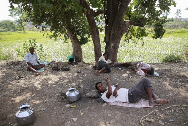 Laborers rest during a lunch break next to a paddy field in Karjat, India, March 1, 2016. (Photo by Danish Siddiqui/Reuters)