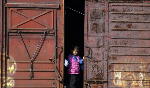 A migrant girl looks from inside a railway wagon at a train station near the makeshift refugee camp at the northern Greek border point of Idomeni, Greece, Monday, March 28, 2016. (Photo by Darko Vojinovic/AP Photo)