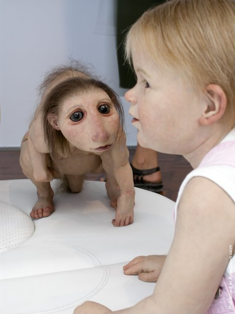 Sculptures By Patricia Piccinini